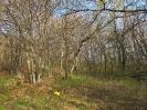 Intervento habitat - 06.04.2014