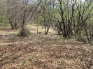 habitat-140406-29