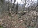 habitat-130407-11