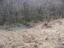 habitat-130407-1