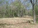 habitat-110410-17
