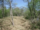 habitat-110410-18
