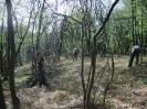habitat-110410-3