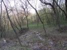 habitat150412-4