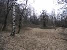Intervento habitat - 13.04.2014