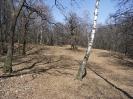 habitat-140413-9