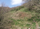 Intervento habitat - 14.04.2013